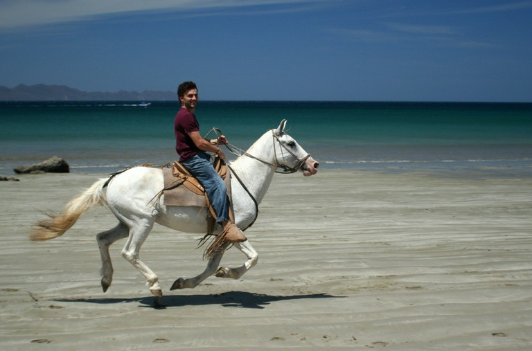 horseback riding on the beach is one of the things to do besides kite boarding when the seldom day with no winds comes along.jpg - big